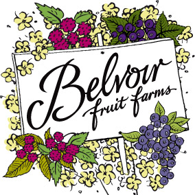 Belvoir-Fruit-Farms-logo_high-res - Minerals & Soft Drinks