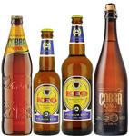 Asian-Beer-2