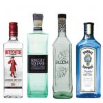 Gin1 - Spirits