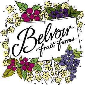 Belvoir-Fruit-Farms-logo_high-res - Minerals & Soft Drinks
